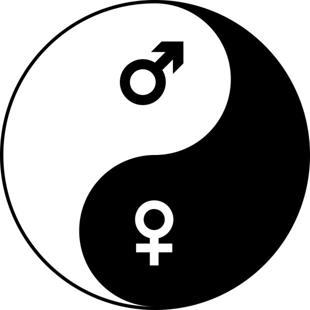 male/female yin and yang