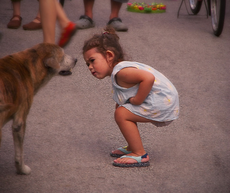 child and talking dog