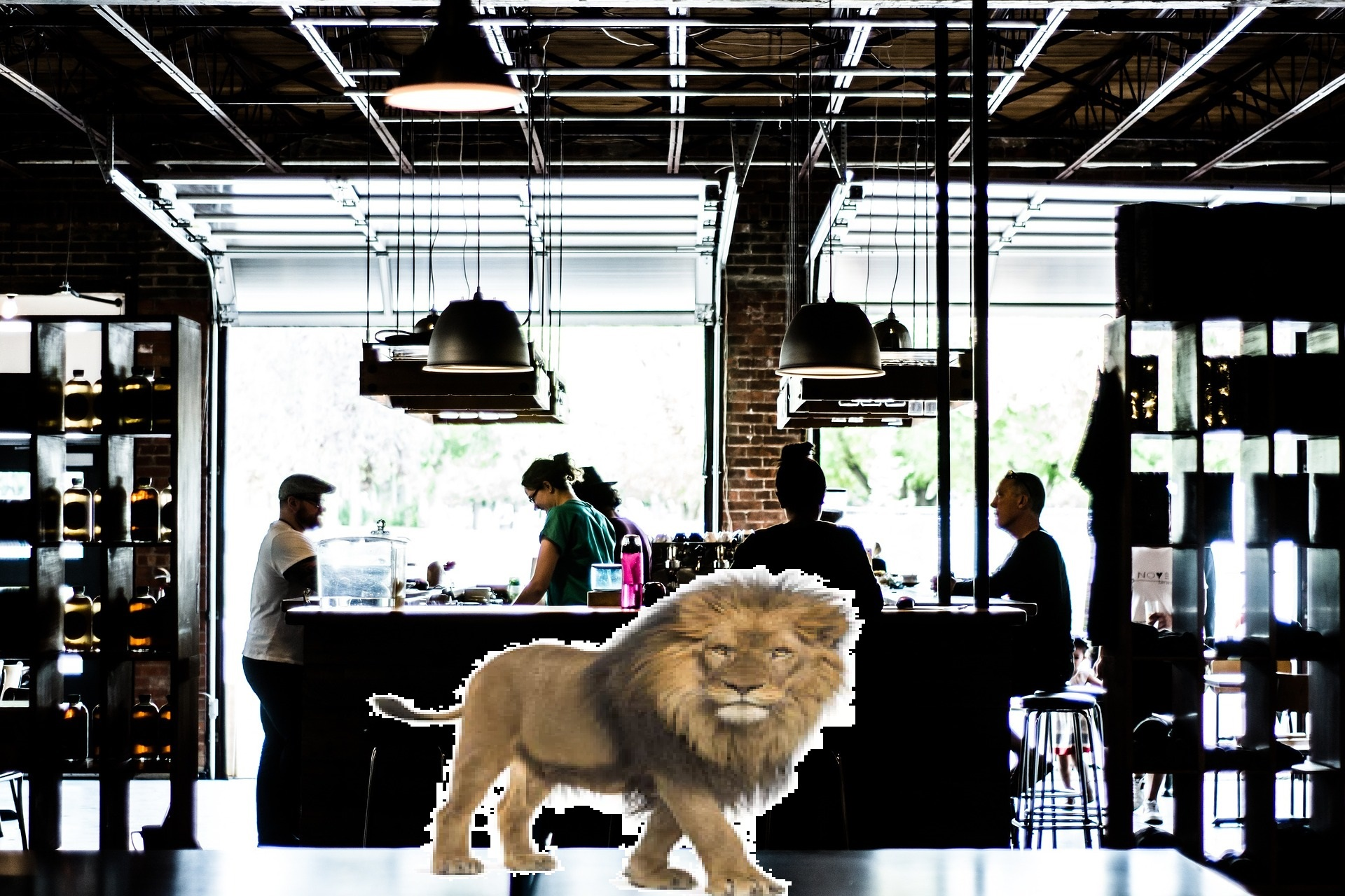 Lion in a Cafe